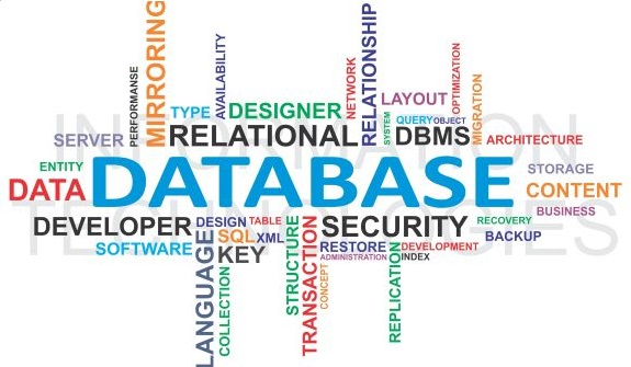 Database is the reason you survive today!